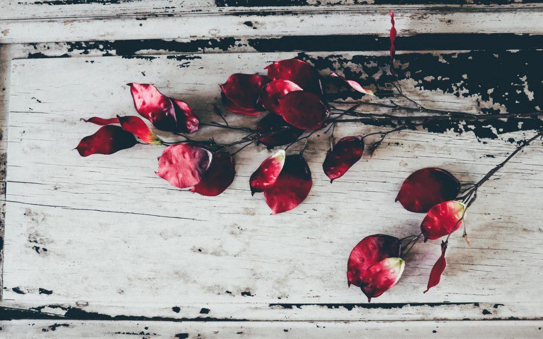Pensamientos catastróficos: ¿Cuántos funerales has organizado?